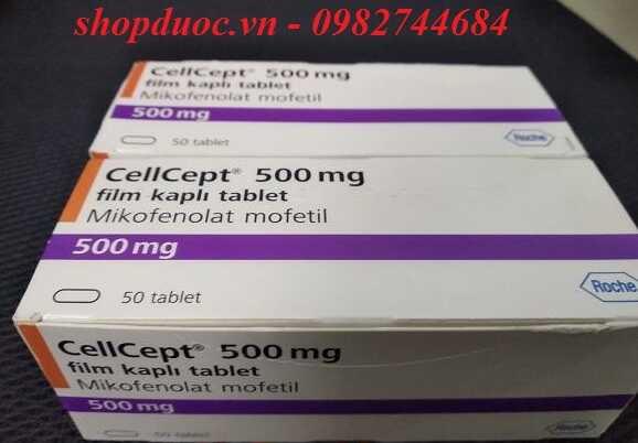 Tác dụng của thuốc Cellcept 500mg