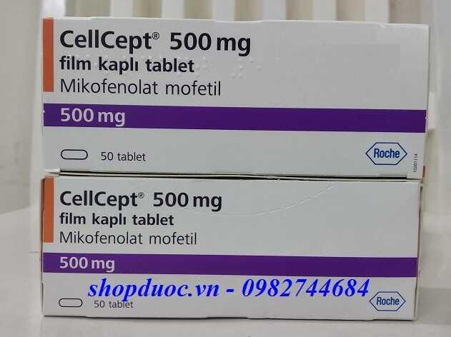 Thuốc Cellcept 500mg điều trị thải ghép tạng khó điều trị
